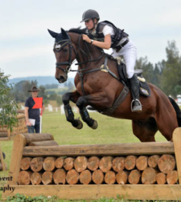 Performance Horses | Eventing
