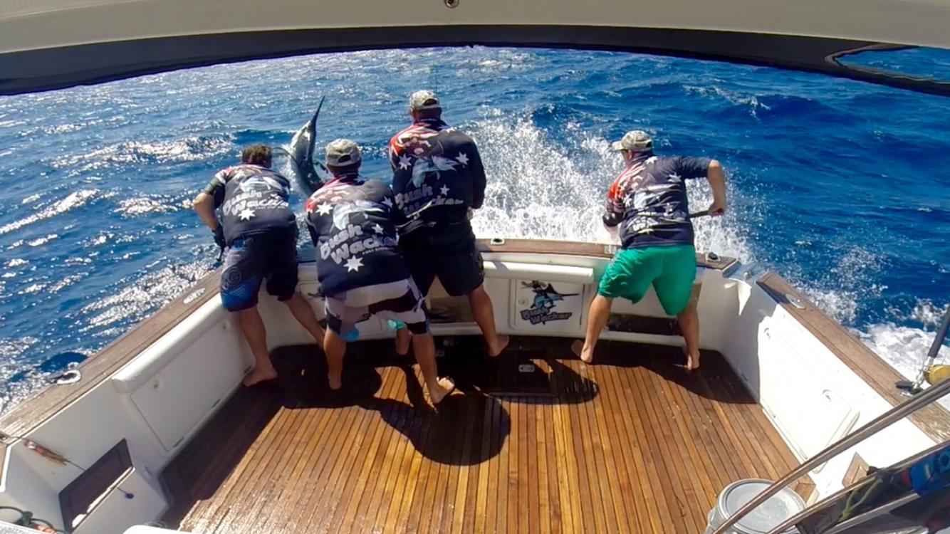 Olympic fundraiser ball donation sponsorship request for Fishing sponsorship application